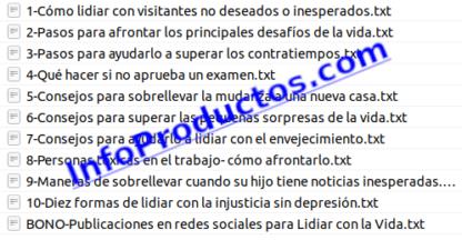 Pack-10Articulos-LidiarConLaVida-DesarrolloPersonal