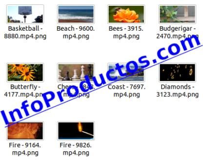 EditorsChoise4KStockVideoFootage-pt1-videos-InfoProductos.com