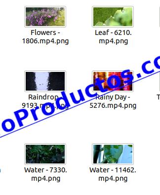 Rain4KStockVideoFootage-videos-InfoProductos.com